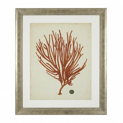 Настенный декор EICHHOLTZ Prints Antique red corals set of 6 арт 111741: фото 5