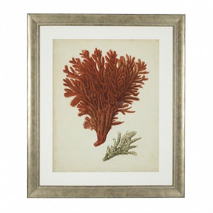 Настенный декор EICHHOLTZ Prints Antique red corals set of 6 арт 111741: фото 7