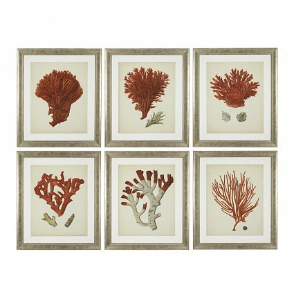 Настенный декор EICHHOLTZ Prints Antique red corals set of 6 арт 111741: фото 1